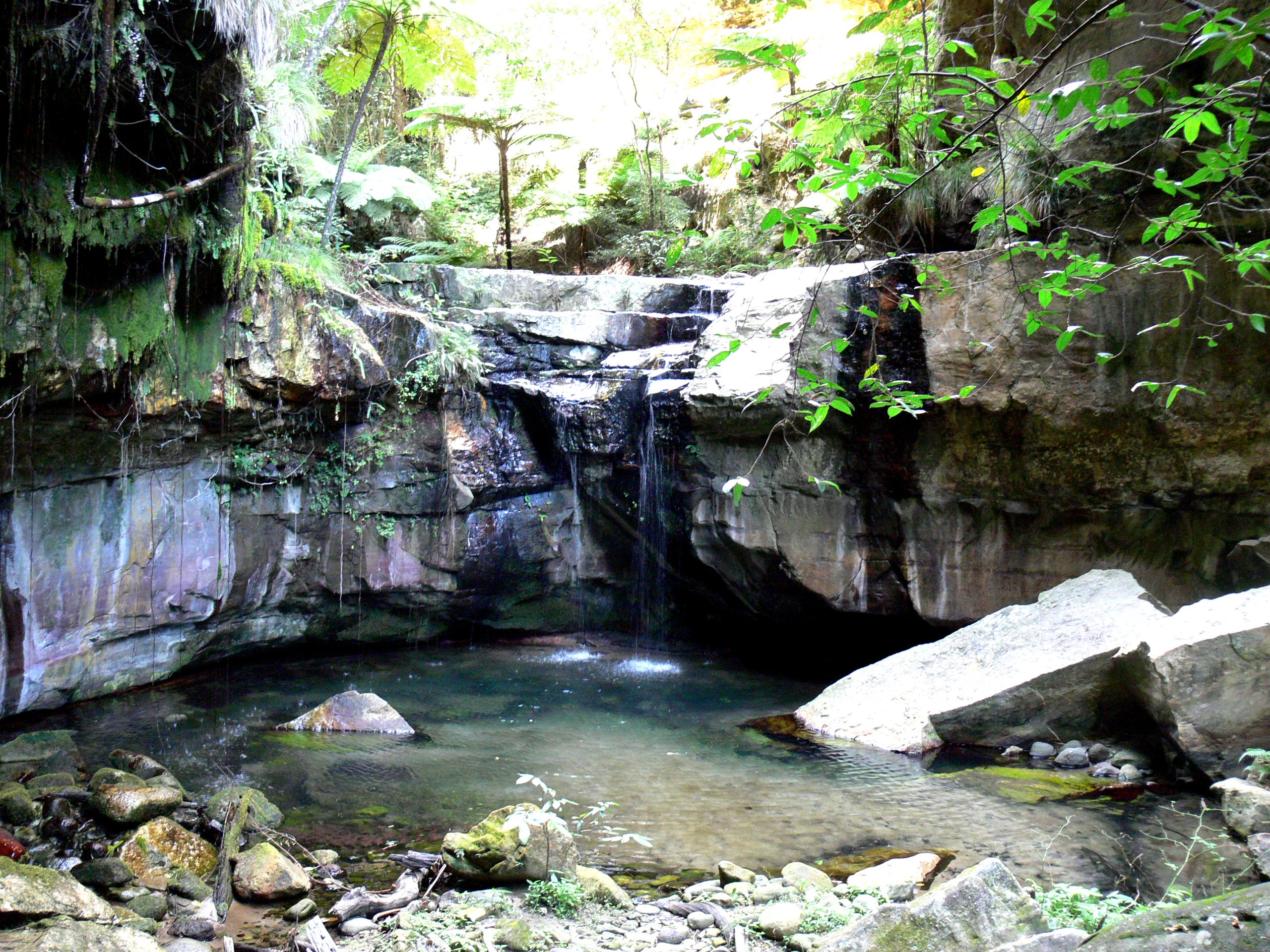 Platypus Walk >> Gorgeous Carnarvon Gorge | Tim Bowden's blog