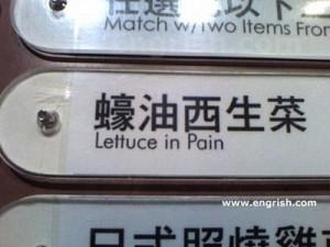 Painful lettuce