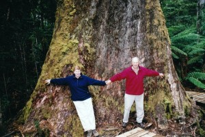 Destined for woodchips? The Bowdens at the base of this 87 metre giant Eucalyptus regnans in the Styx Valley.